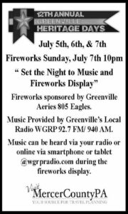 Set the Night to Music - Fireworks Display